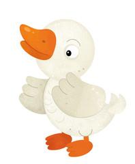 cartoon scene with duck on white background - illustration for children