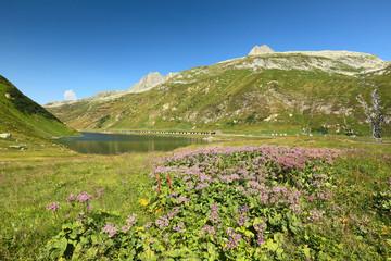 View of the lake Oberalpsee, Switzerland