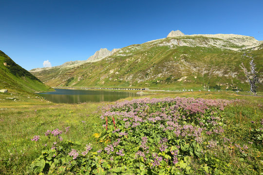 View of the lake Oberalpsee, Switzerland