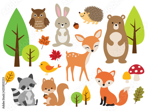 Fototapete Vector illustration of cute woodland forest animals including deer, rabbit, hedgehog, bear, fox, raccoon, bird, owl, and squirrel.