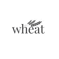 Wheat logo. Wheat typography and wheat ears. Business design template.