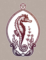 Hand drawn seahorse with sea plants. Vintage vector illustration.
