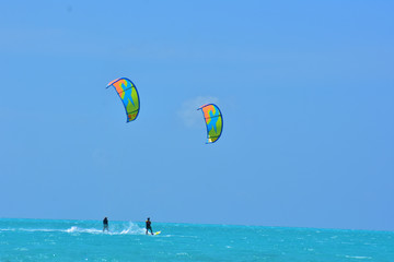 People practicing kitesurfing on a beautiful summer day - Caribbean - Archipelago of Los Roques - Venezuela