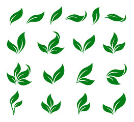 abstract green leaf isolated icons design set