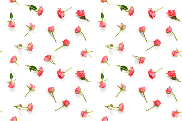 seamless pattern from pink rose flowers on a white background, flat lay, high angle view from above