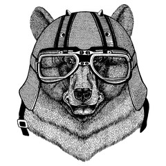 Bear wearing a motorcycle, aero helmet. Hand drawn image for tattoo, t-shirt, emblem, badge, logo, patch.
