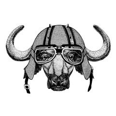 buffalo, bull, ox wearing a motorcycle, aero helmet. Hand drawn image for tattoo, t-shirt, emblem, badge, logo, patch.