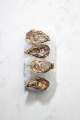 Fresh raw oysters offered on crushed ice on a marble white background with copy space.