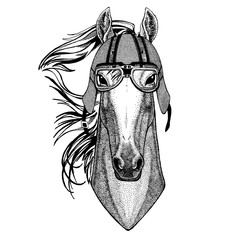 Horse, hoss, knight, steed, courser wearing a motorcycle, aero helmet. Hand drawn image for tattoo, t-shirt, emblem, badge, logo, patch.