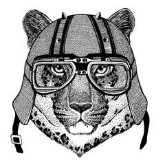 Leopard, jaguar, wild cat, panther wearing a motorcycle, aero helmet. Hand drawn image for tattoo, t-shirt, emblem, badge, logo, patch.