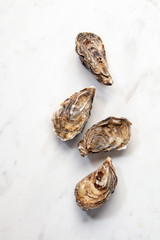Fresh seafood - raw natural closed oysters on a stone white background with copy space. Top view