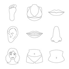 Isolated object of body and part icon. Set of body and anatomy stock vector illustration.