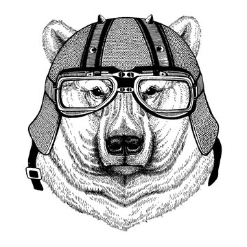 Polar white bear wearing a motorcycle, aero helmet. Hand drawn image for tattoo, t-shirt, emblem, badge, logo, patch.