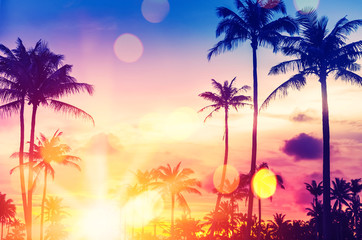 Foto op Aluminium Zee zonsondergang Tropical palm tree with colorful bokeh sun light on sunset sky cloud abstract background.