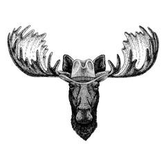 Moose, elk wearing cowboy hat. Wild west animal. Hand drawn image for tattoo, emblem, badge, logo, patch, t-shirt