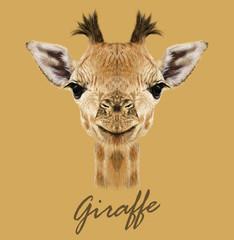 Giraffe animal face. Vector cute head of African giraffe. Realistic savannah wild fur giraffe portrait isolated on tan background.