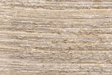 Close up on a white painted wooden plank as abstract background. Copy space for your text.
