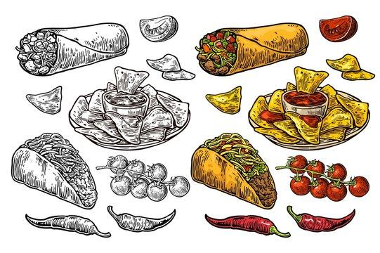 Mexican traditional food set burrito, tacos, chili, tomato, nachos. Engraving