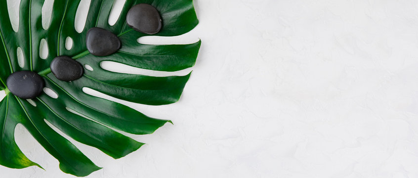 Flat lay of spa background, palm leaves and black wet stones, top view with copy space