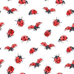 Fototapeta Watercolor ladybug seamless vector pattern obraz