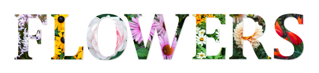 flowers collage sign made of real floral photos. Botanical font