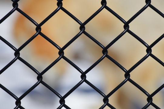 Chain Fence Background