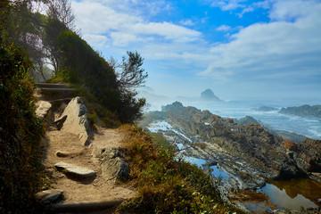Hiking trail at coastline