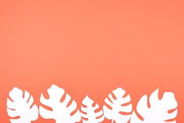 White paper Monstera leaves on coral orange background with copy space. Summer tropical exotic palm plant frame flat lay, top view.
