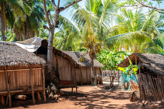 traditional African village, huts built with the traveller's palm. Nosy-be, Madagascar