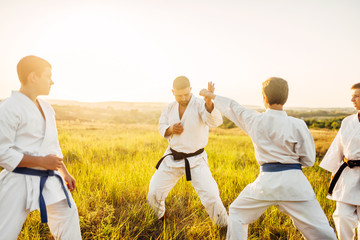 Junior karate fighters with master, skill training