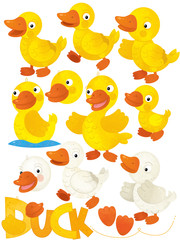cartoon scene with duck set on white background - illustration for children