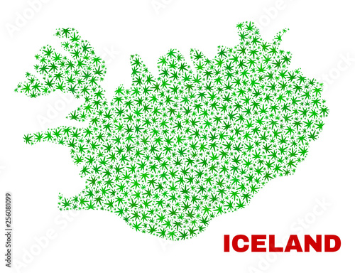 Vector cannabis Iceland map collage. Concept with green weed leaves ...
