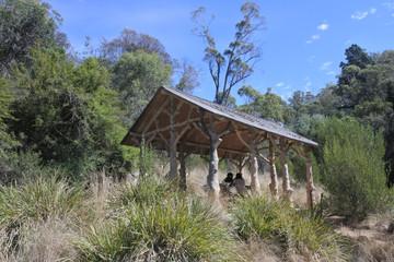 Tourist in Cataract Gorge Reserve in Launceston Tasmania Australi