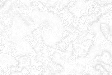 Abstract Blank Detailed Topographic Contour Map Subtle White Vector Background. Topographic Cartography. Topographic Map. Topographic Relief. Topography Map. Topography Relief  Wall mural