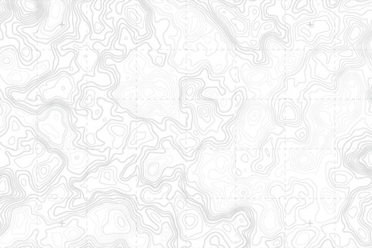 Abstract Blank Detailed Topographic Contour Map Subtle White Vector Background. Topographic Cartography. Topographic Map. Topographic Relief. Topography Map. Topography Relief