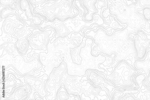 Abstract Blank Detailed Topographic Contour Map Subtle White Vector