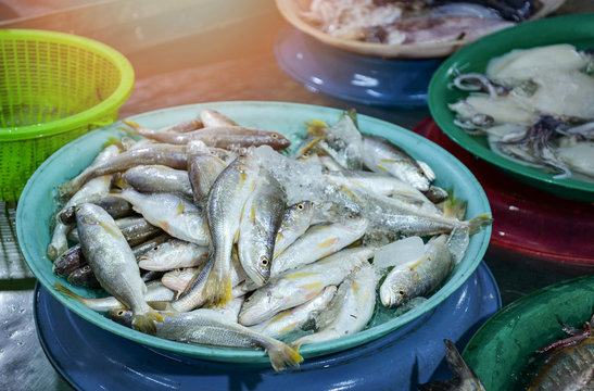 Fresh fish in ice bucket for sale in the seafood market / sea fish yellow tail