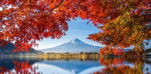 Zelfklevend Fotobehang Rood traf. Colorful Autumn Season and Mountain Fuji with morning fog and red leaves at lake Kawaguchiko is one of the best places in Japan