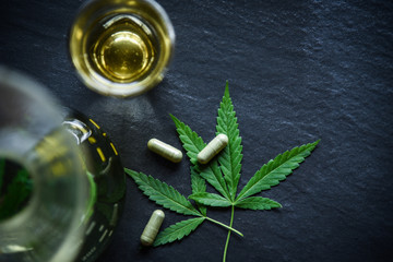 Marijuana leaf plant cannabis herbal tea and capsule on dark background / Hemp leaves for extract medical healthcare