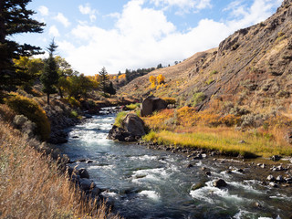 Whitewater River with Autumn Vegetation