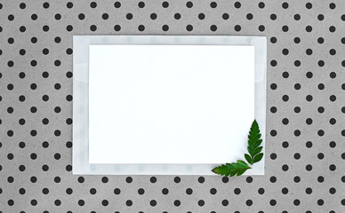 flatley  with white paper sheet for text and fern leaves,  top view, space for text, copy space,