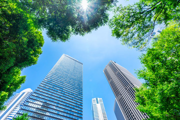 Wall Mural - Asia Business concept for real estate, corporate construction and ecology - looking up view of panoramic modern city skyline with blue sky and green tree in shinjuku, tokyo, japan