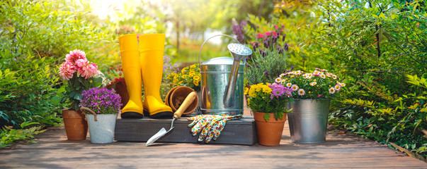 Foto op Canvas Tuin Gardening tools and flowers in the garden