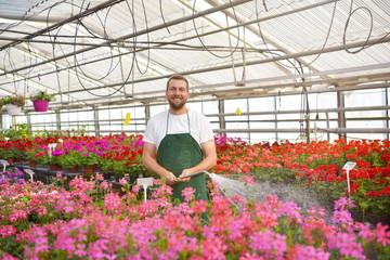 Portrait freundlicher Gärtner/ Mann in eine, Gewächshaus mit bunten Blumen für den Handel // Portrait friendly gardener / man in a greenhouse with colorful flowers for trade
