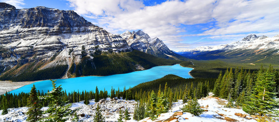 View from Bow Summit of Peyto lake in Banff National Park, Alberta, Canada.