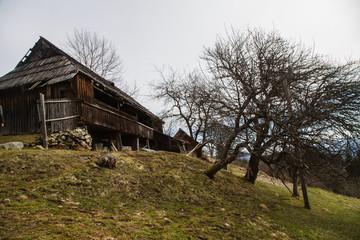 Landscape in the Hutsul mountain village in the morning .