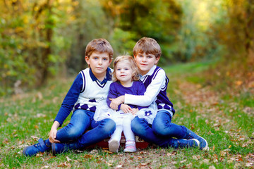 Portrait of three siblings children. Two kids brothers boys and little cute toddler sister girl having fun together in autumn forest. Happy healthy family playing, walking, active leisure on nature