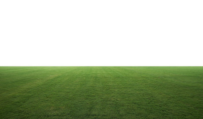Night lighting beautiful wide green grass field . Include clipping path .