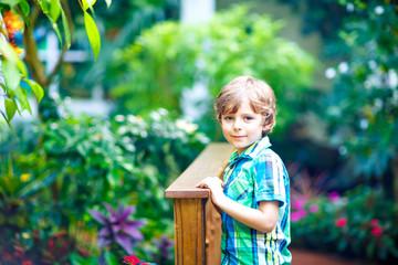 Little blond preschool kid boy discovering flowers, plants and butterflies at botanic garden. Schoolchild interested in biology. Active educational leisure with preschool kids in museum