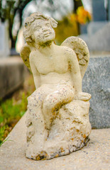 A aged white alabaster Angel grave statue on a grave.  The Cherub Angel is looking towards the heavens.